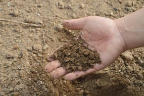 soil thermal properties